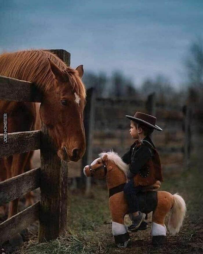 Mały kowboj