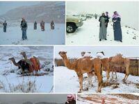 Nie szukajcie śniegu, jest w Arabii Saudyjskiej
