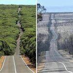 Australijska Wyspa Kangura przed i po pożarze