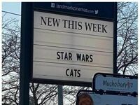 Gwiezdne Wojny Kotów