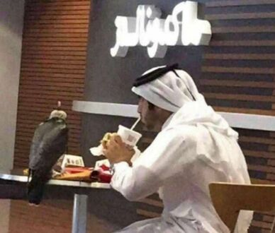 Ze zwierzątkiem w restauracji