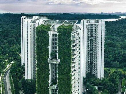 Zielone bloki w Singapurze