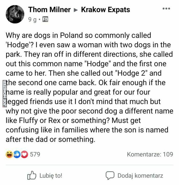 why are dogs in poland so commonly called hodge