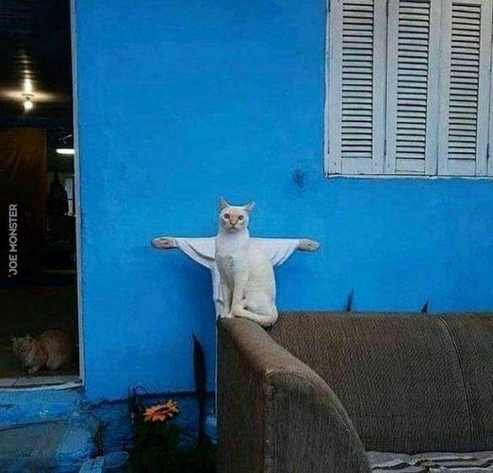 Koci zbawiciel