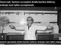 System działa, ale...