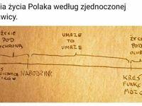 Polska linia życia