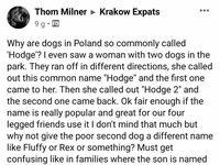 Dziwne te polskie imiona psów