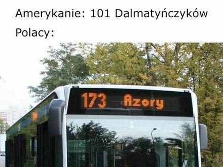 Polacy zawsze lepsi