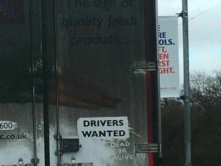 Poszukiwani kierowcy - żywi lub martwi