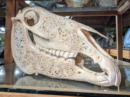 Rzeźbiona czaszka konia