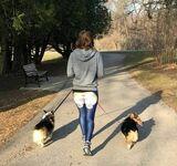 Z psiakami na spacerze
