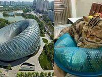 Inspiracja dla nowoczesnej architektury