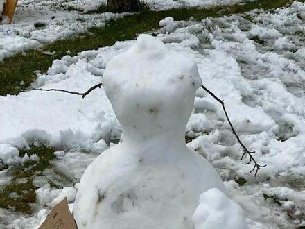 Śnieżna Maria Antonina
