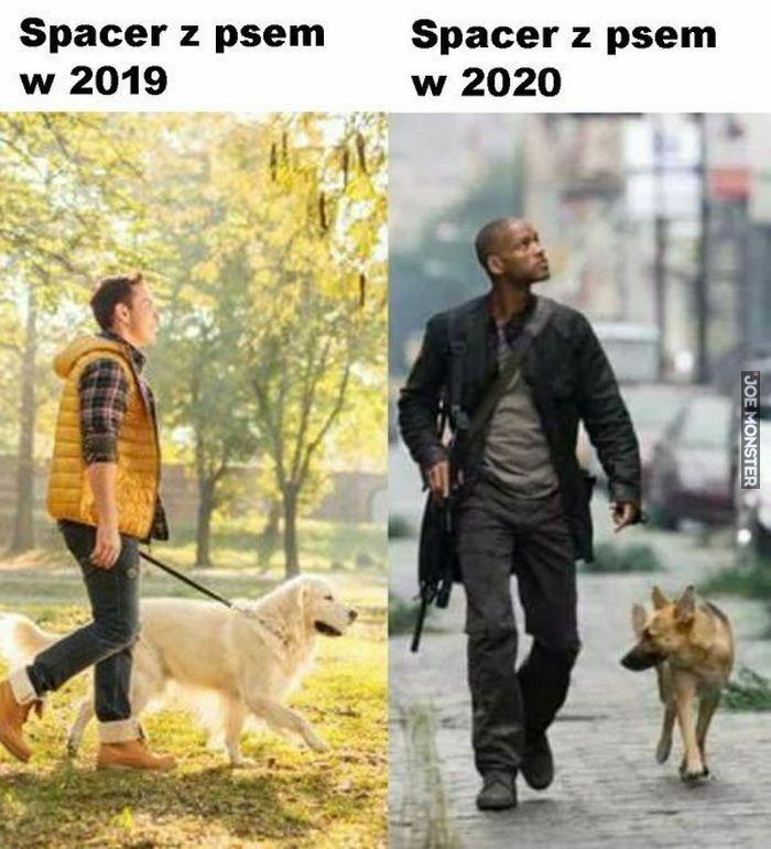 spacer z psem w 2019