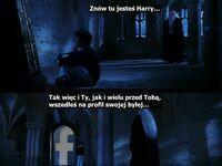 Mądre słowa Dumbledore'a