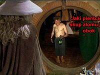Pato-Frodo z dziupli