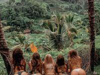 Gdzieś w dzikiej dżungli
