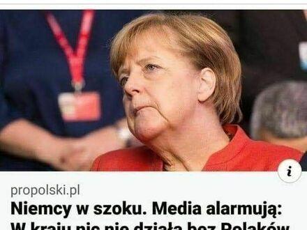 Niemcy panikują