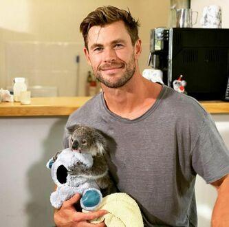 Chris Hemsworth z małą koalą w Australii
