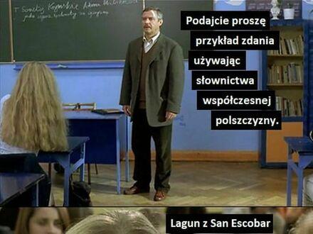 Polska język, piękna język