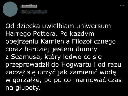 Cichy bohater w Hogwarcie