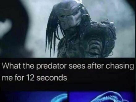 Co widzi Predator po 12-sekundowym pościgu za mną