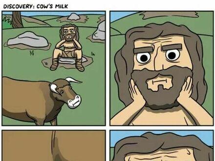 Jak odkryto krowie mleko