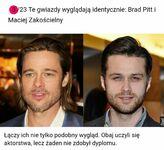 Mamo, ja chcę Brada Pitta. Mamy Brada Pitta w domu.  Brad Pitt w domu: