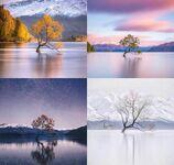 Jezioro Wanaka, Nowa Zelandia - cztery pory roku