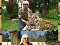 Cosplay Króla Tygrysów