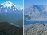 Góra St. Helens przed i po erupcji w 1980
