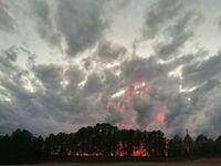 Zachód słońca, który wygląda jak pożar lasu