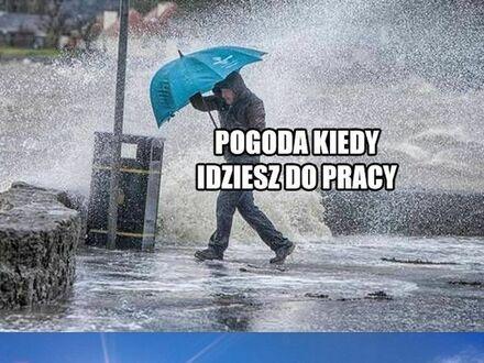 Witajcie w Polsce