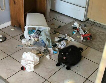 Jest na diecie, ale nie może sobie darować śmieciowego jedzenia