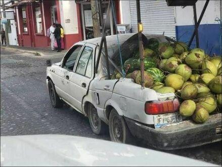 Przystosowany do przewozu melonów