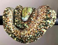 Pikselowaty wąż
