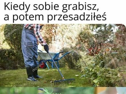 Niebezpieczny żywot ogrodnika