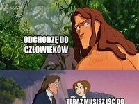 Mądry Tarzan po szkodzie