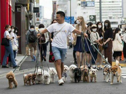 Dużo psiaków to więcej radości