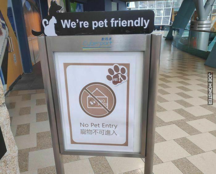 we're pet friendly no pet entry