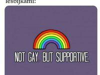 Nie jestem gejem, ale pomagam