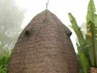 Tradycyjna chata w Etiopii