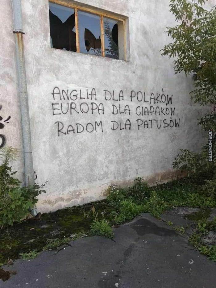 anglia dla polaków europa dla ciapaków