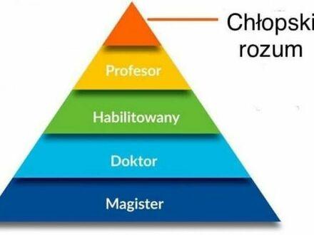 Piramida autorytetów 2021