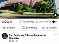 Co oni w tym Gdańsku?!