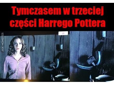 Towarzysz Potter