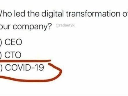 Kto wprowadził cyfrową transformację w twojej firmie?