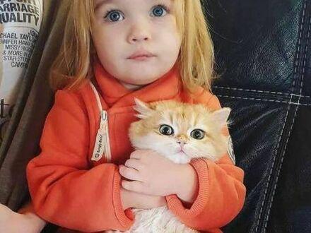 Dwa małe rudzielce
