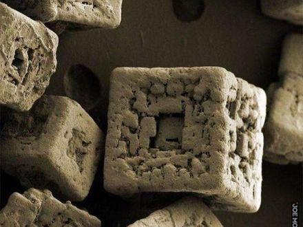 Kryształy soli pod mikroskopem