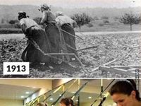 Historia zatoczyła koło